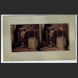 Photo 193-514 [JMC s/n]